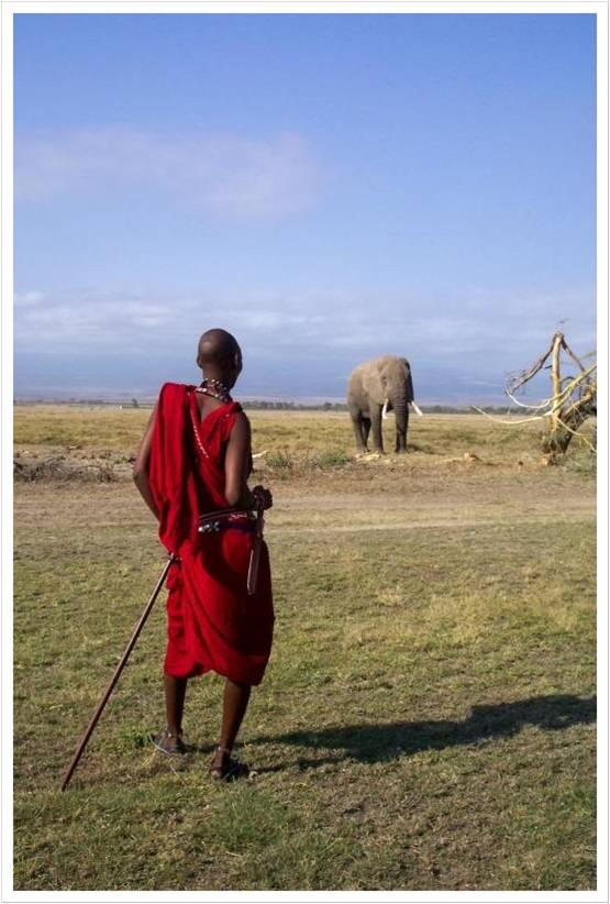 Kenyan man looking over horizon